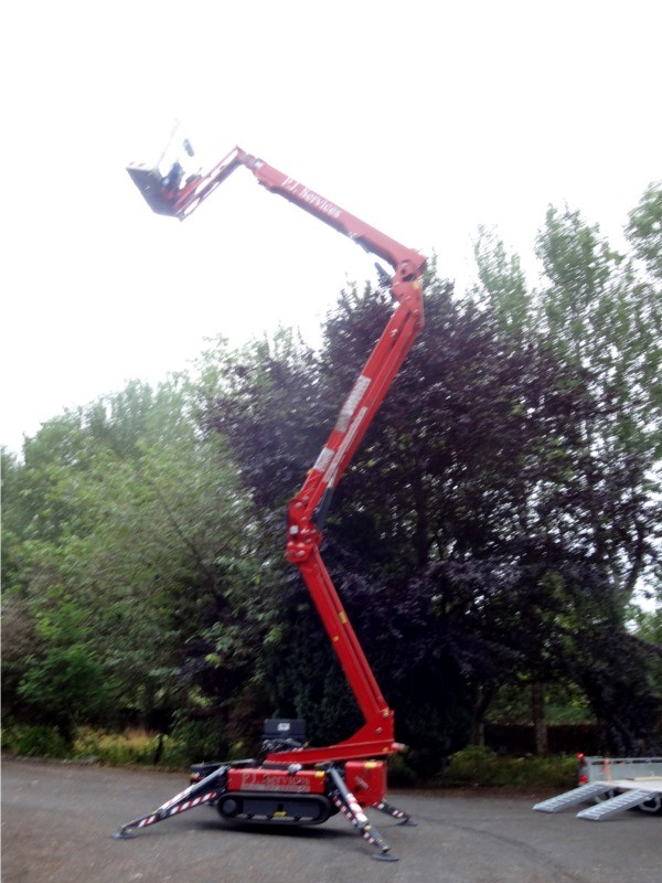 P J Services, Sligo uses a cherry picker (MEWP) to perform sectional dismantling of trees to safely remove trees